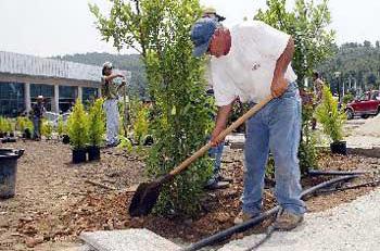 Γεωπόνος για εργάτρια κήπων…